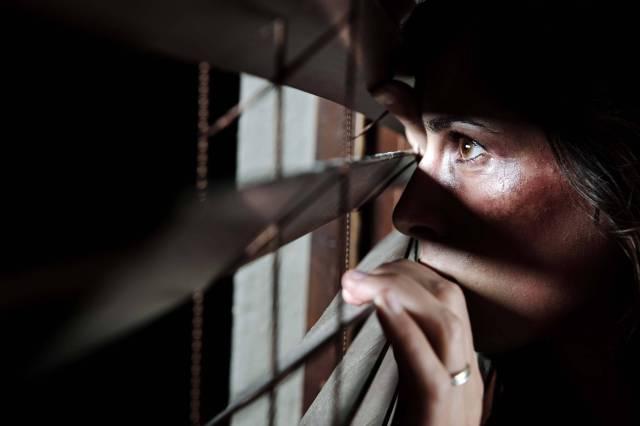 Domestic Violence in Nevada