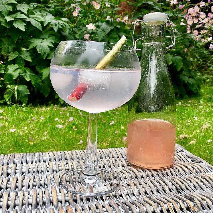 Rhubarb and Ginger Infused Gin