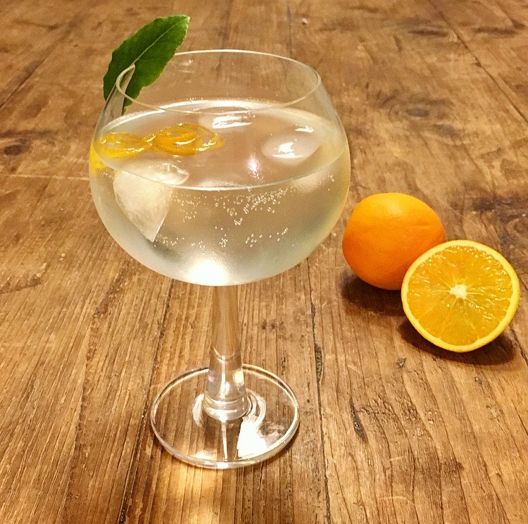 Orange and Bay Infused Gin