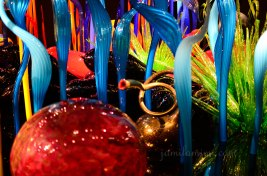 chihuly-12a