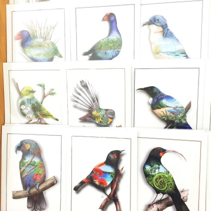 NZ Bird Prints - Sophie Blokker
