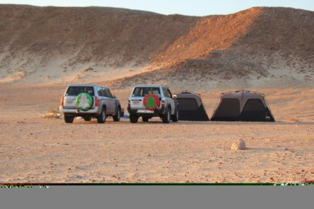 Tents bathed in late sunlight - 22.12.14 Wadi Aydam