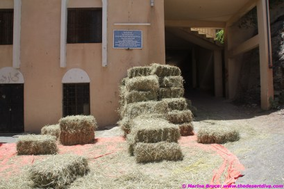 bales of hay for the animals have to be carried by hand into the plantation