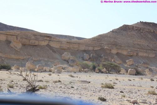 lots of wadi driving