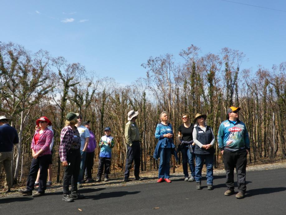 Hotspots workshop participants stand amongst burnt-out trees and learn how the landscape affected the behaviour of the Carwoola bushfire. Image: K. McShea, Hotspots Fire Project
