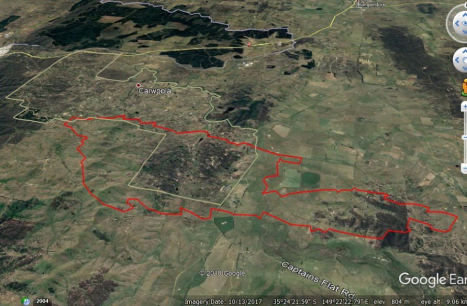 The brown outline shows the most densely populated area of Carwoola (made up of about 500 properties) in relation to the bushfire's footprint (in red). The fire intersected with an area made up of around 60 properties. Around 50 buildings were lost, including 11 homes.