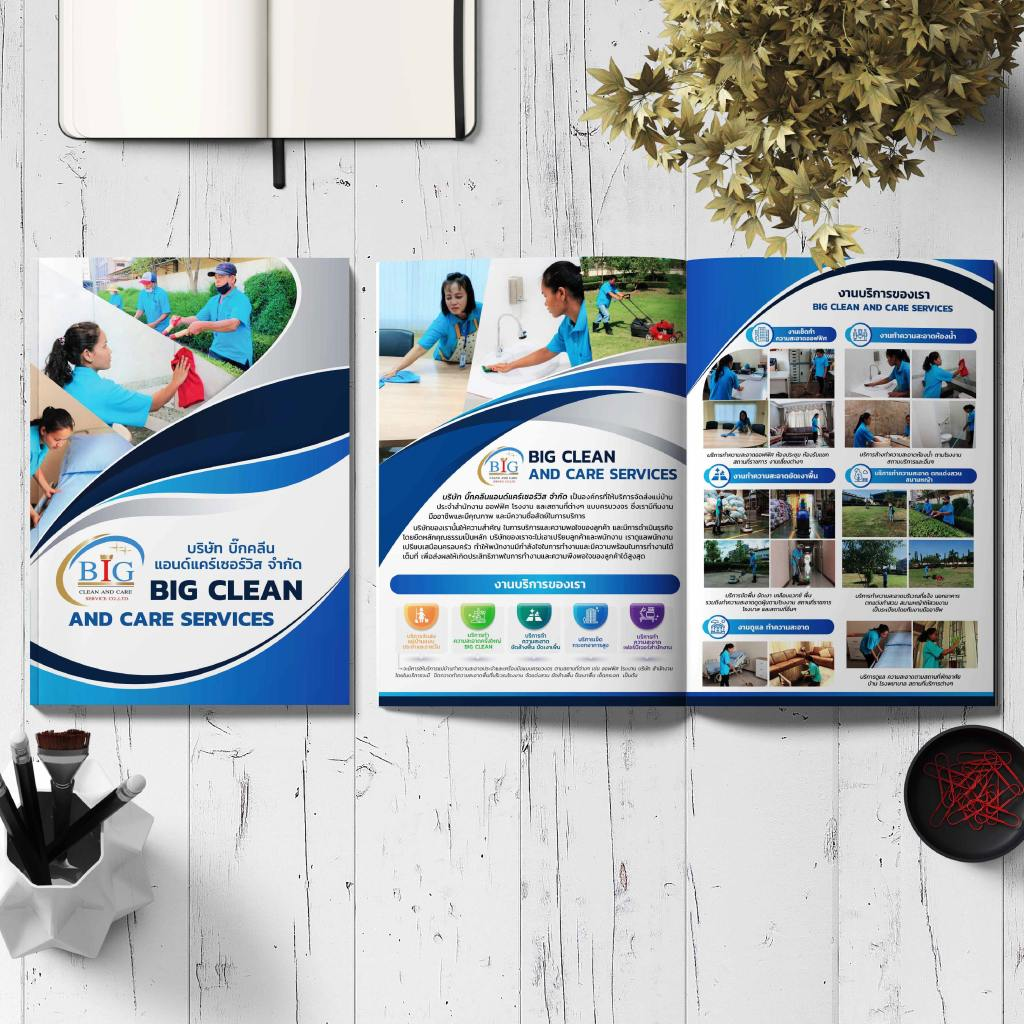 Company Profile Big Clean And Care Servies