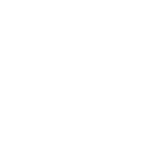 The Design Jedi | Logo | Reversed