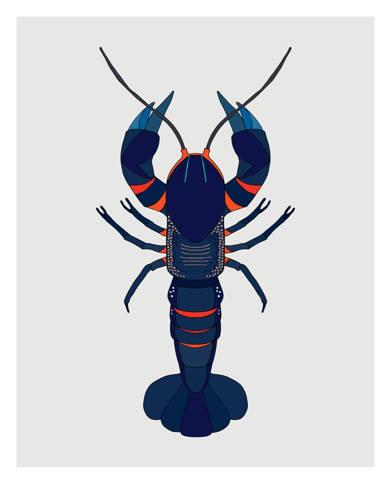 Crayfish by Egg Picnic. Image: supplied