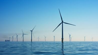Wind farm in sea, creating renewable energy