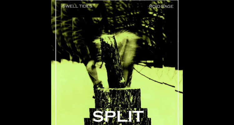 Cover of Swell Tides' and Roid Rage's Split