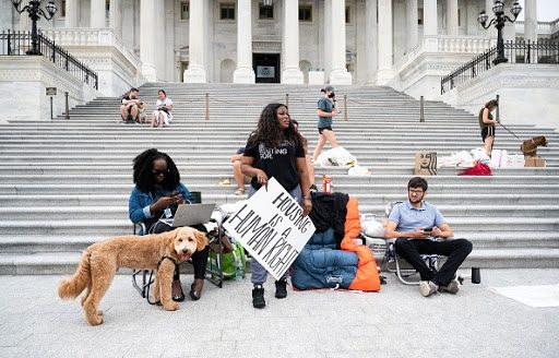 """U.S. Rep. Cori Bush stands in front of the steps of the U.S. Capitol, holding a sign that reads, """"Housing is a human right."""""""