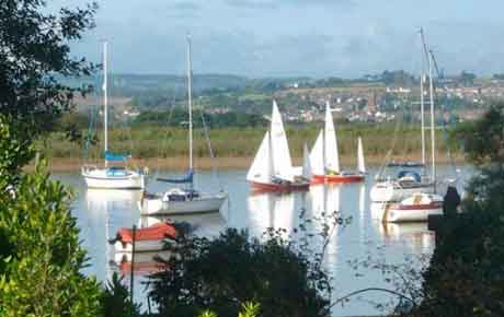 View from Topsham House