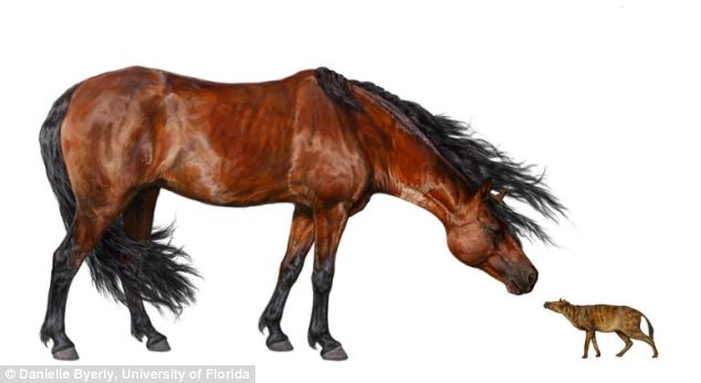 Ancient-Horse-And-Modern-day-Horse