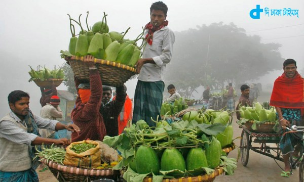 Vegetable farmers in cultivation and marketing