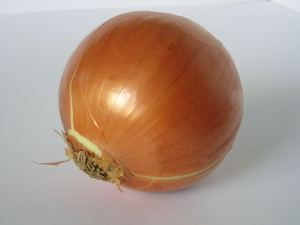 Onion extract, diabetes and cholesterol