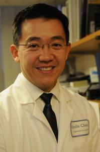 Paolo Silva, M.D., Staff Ophthalmologist and Assistant Chief