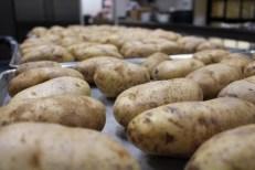 potatoes-link-to-diabetes