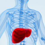 Liver Disease Risk Greater for Type 2 Diabetics