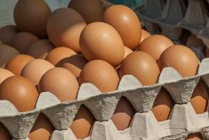 เรียกคืนไข่โลกดี