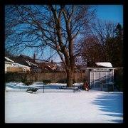 A Winter's Tale of Rebirth Podcast Album Cover