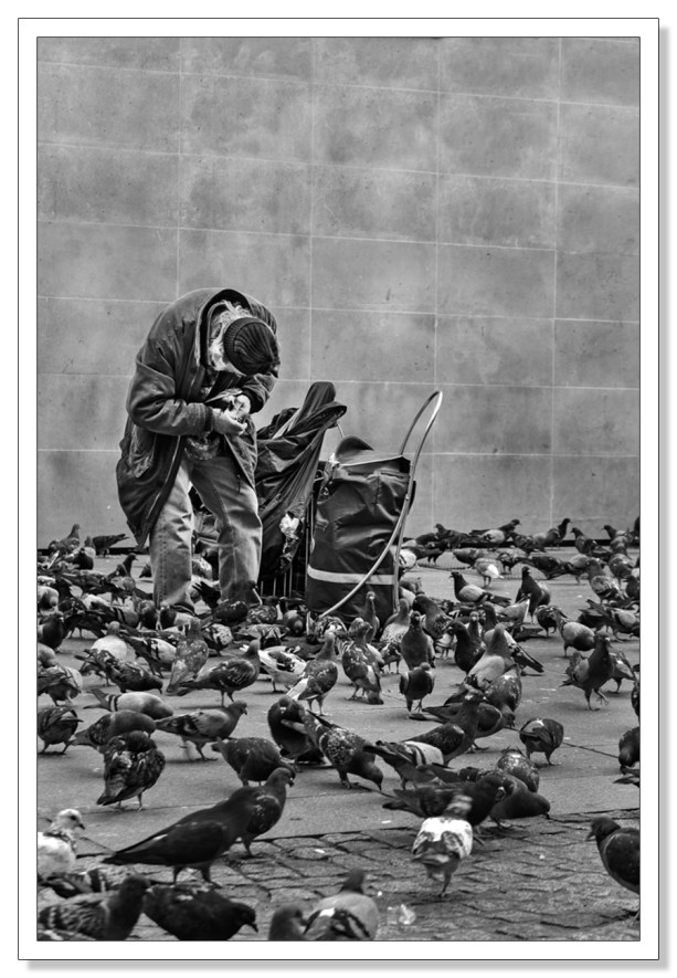 This one invites the viewer to imagine how the pigeon man may look facially , his body language gives us an understanding of his love for the pigeons despite his own obvious struggles.