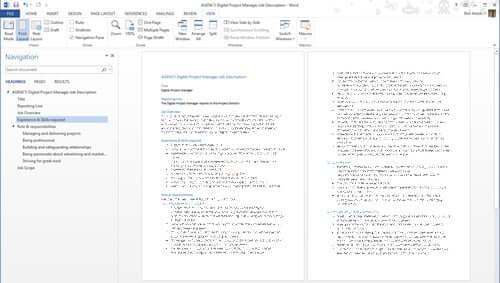 AGENCY Digital Project Manager Job Description Template