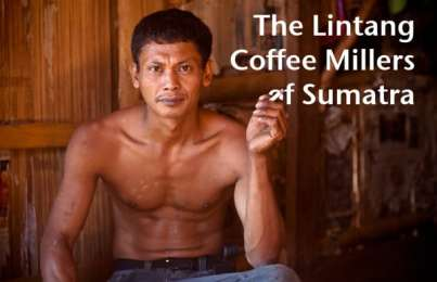 Multimedia: Lintang Coffee Millers of Sumatra
