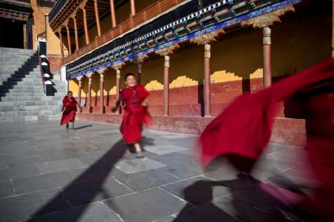 The youngest monks run to get tea for their senors during morning the puja at Tiksey monastery.