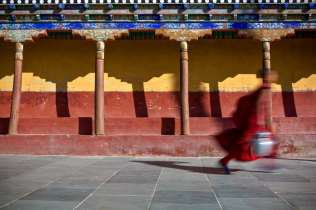 Running for to fetch tea for the older lamas at Tiksey monastery.