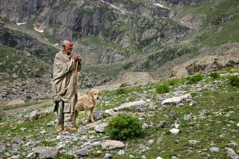 A Kashmiri shepherd.