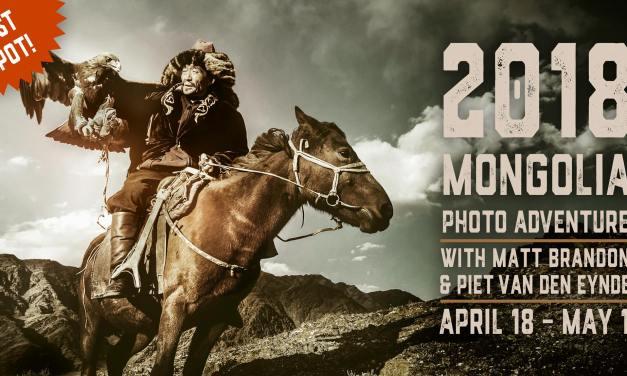 Mongolia: One Spot Open!