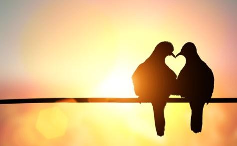 Love just is [poem]