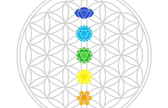 Die 7 Chakras für mehr Energie
