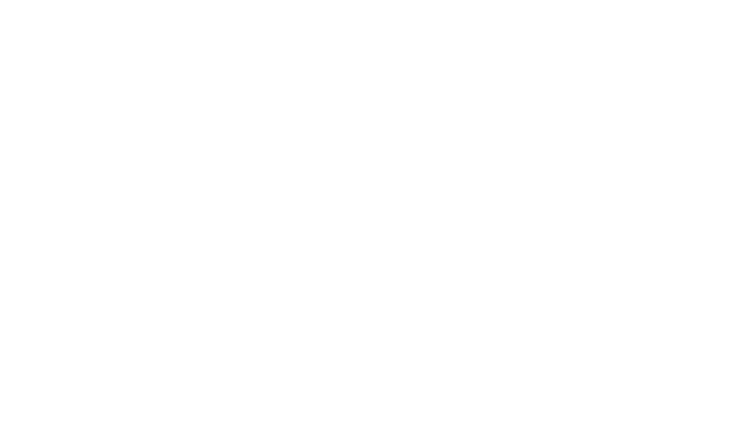 THE DILIGENT COMPANY LOGO SMALL WHITE