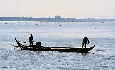 What Is the Value of the Mekong River?