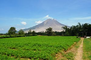 Living In The Shadow Of Mount Sinabung The Diplomat