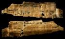 papyrus-4194a
