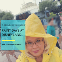 Rainy Days at Disneyland: What to do, wear, and bring!