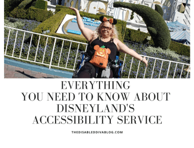 Everything You Need to Know About Disneyland's Accessibility Service