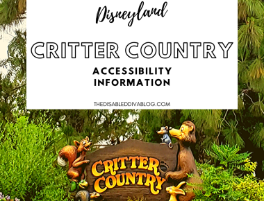 Critter Country Disneyland Accessibility Information