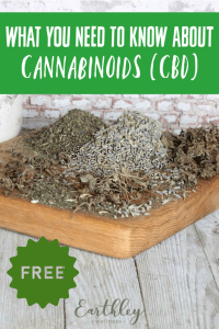 What you need to know about cannabinoids (CBD) free guide
