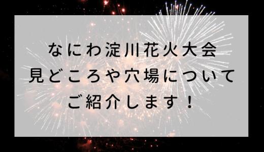 なにわ淀川花火大会2019 見どころや穴場についてご紹介します!
