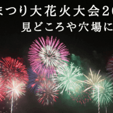 長岡まつり大花火大会2018