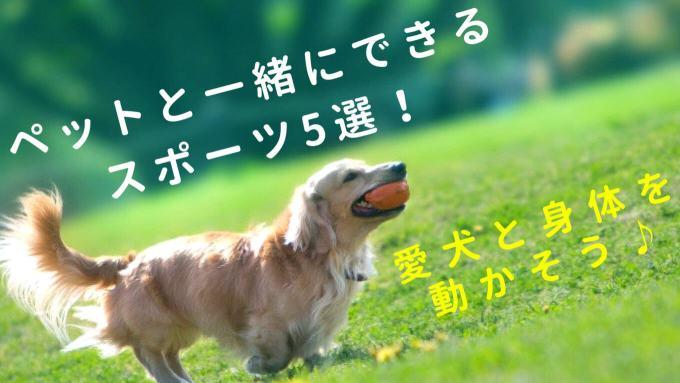 ペットと一緒にできるスポーツ5選!
