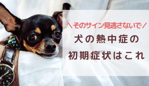 犬の熱中症の初期症状はこれ!そのサイン見逃さないで!
