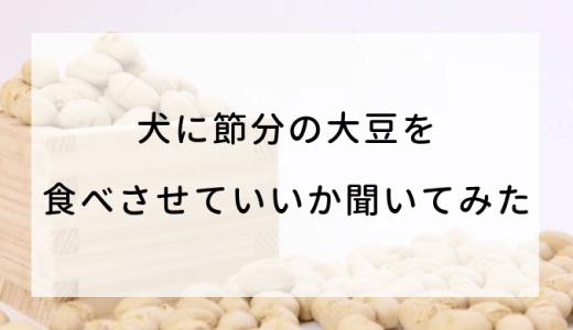 犬に節分の大豆を食べさせていいか聞いてみた!代わりなる物はこれ!