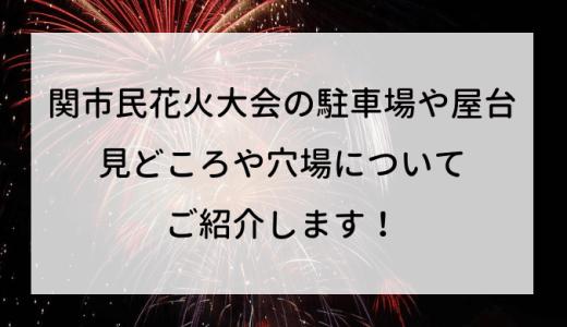 関市民花火大会2019の駐車場や屋台、見どころや穴場についてご紹介します!