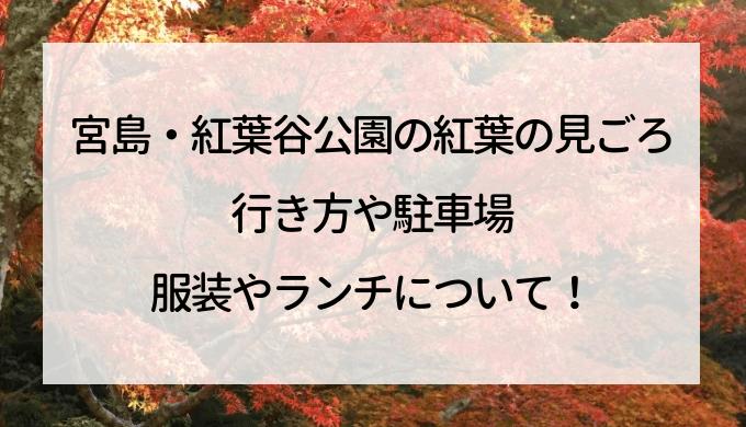宮島・紅葉谷公園の紅葉の見ごろ,行き方や駐車場,服装やランチについて!