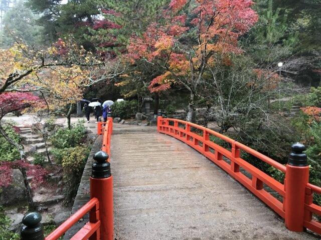 宮島・紅葉谷公園の紅葉の混雑状況と行った感想